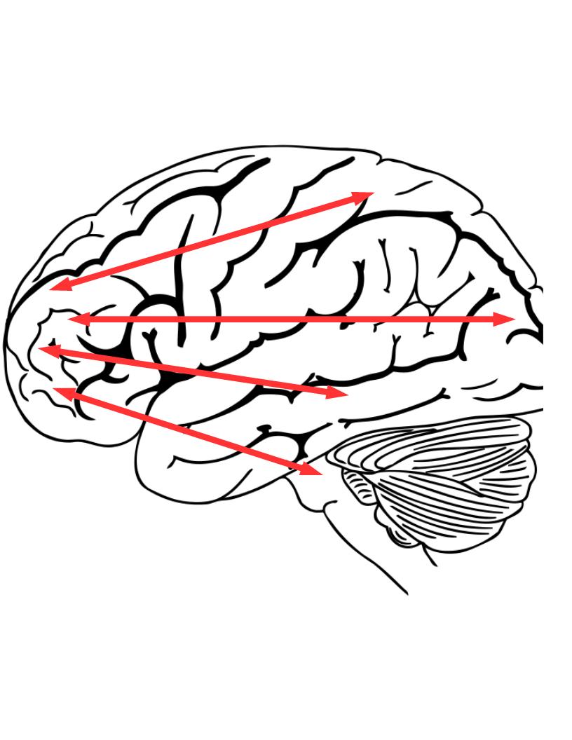 On imagination, feelings, and brain regions   SelfAwarePatterns