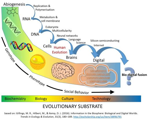 Schematic Timeline of Information and Replicators in the Biosphere: major evolutionary transitions in information processing.